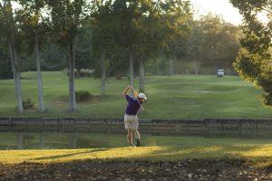 golf banner image