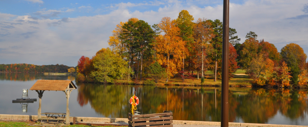Fall foliage in High Point nc